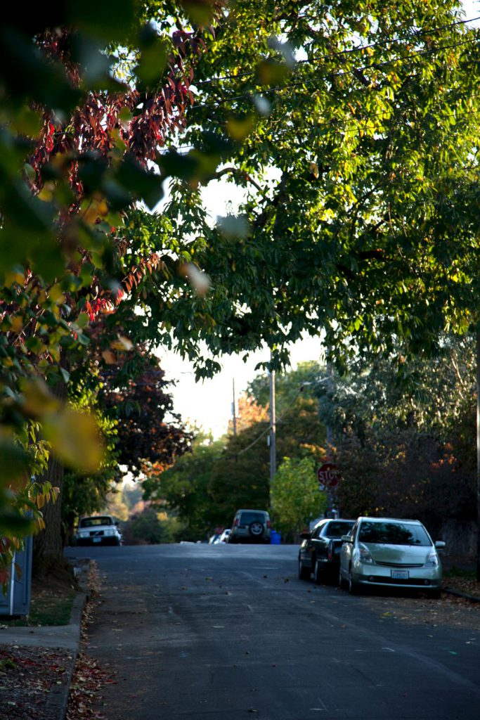 Indian Summer Alberta District Portland