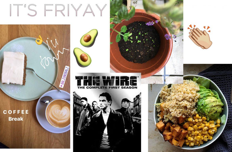 wochenrückblick, salad bowl mit avocado, wochenende, the wire